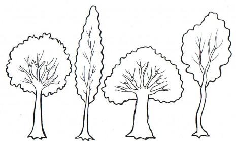 Cuatro arboles