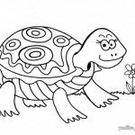 Divirtamonos pintando Tortugas