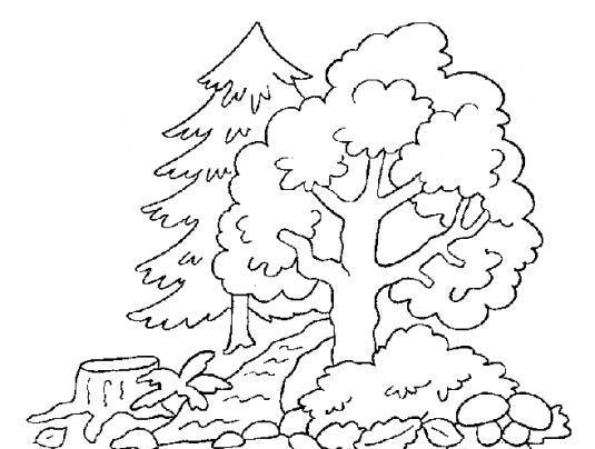 Dibujos Para Descargar Imprimir Y: Dibujos De árboles Para Descargar, Imprimir Y Colorear