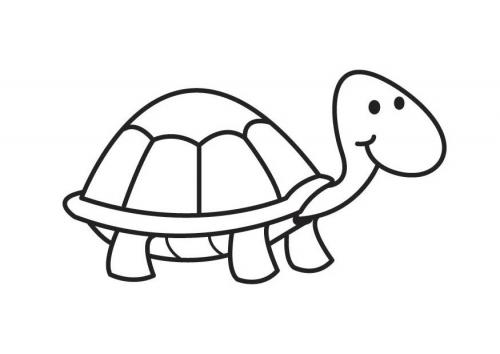 tortuga-animales-colorear-pintar-dibujos