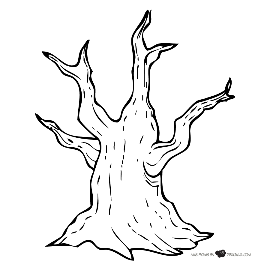 viejo-tronco-arbol