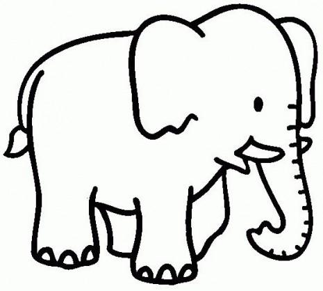 animales-salvajes-Elefante