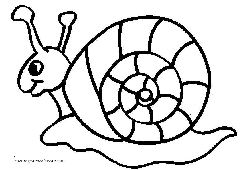Dibujos de caracoles para imprimir y colorear | Colorear ...