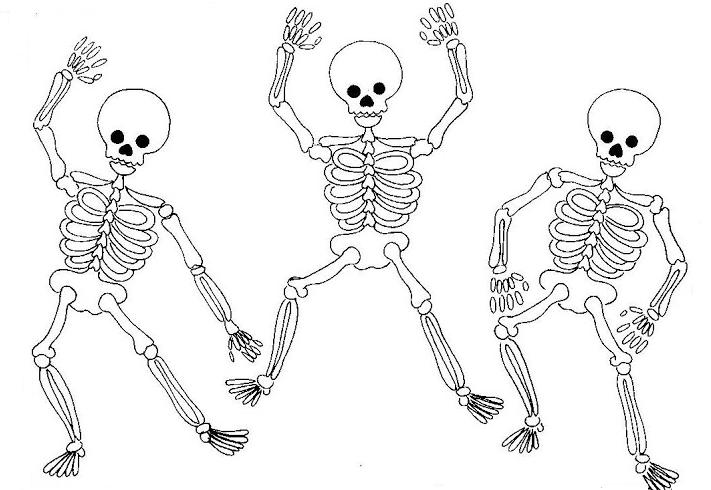 Dibujos de esqueletos humanos para pintar  Colorear imgenes