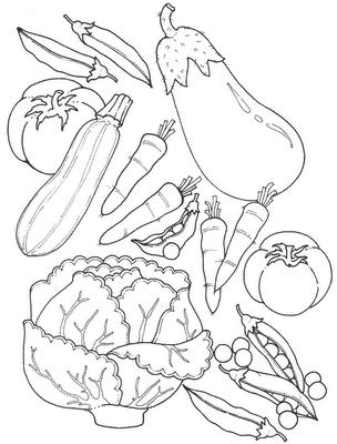 legumes (2)
