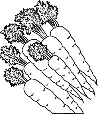 legumes (6)