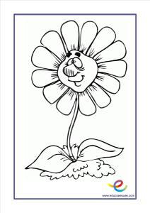 flores-07