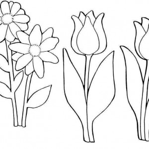 flower-coloring-pages1-300x300