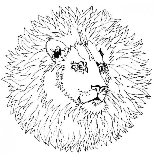 mandalas_animales2i