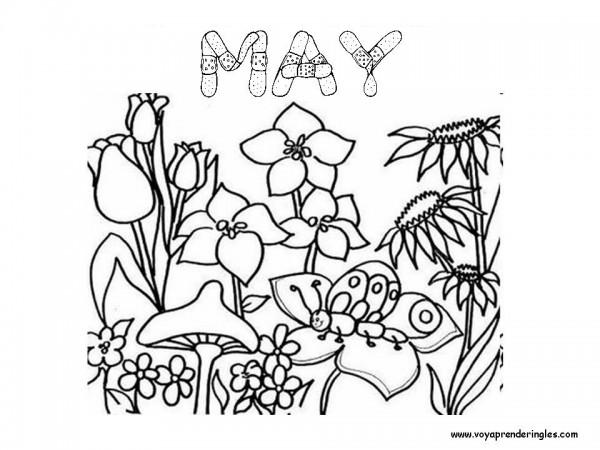 05_may_mayo