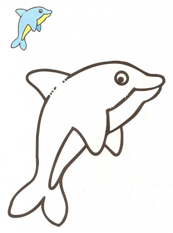Colorea-DELFIN