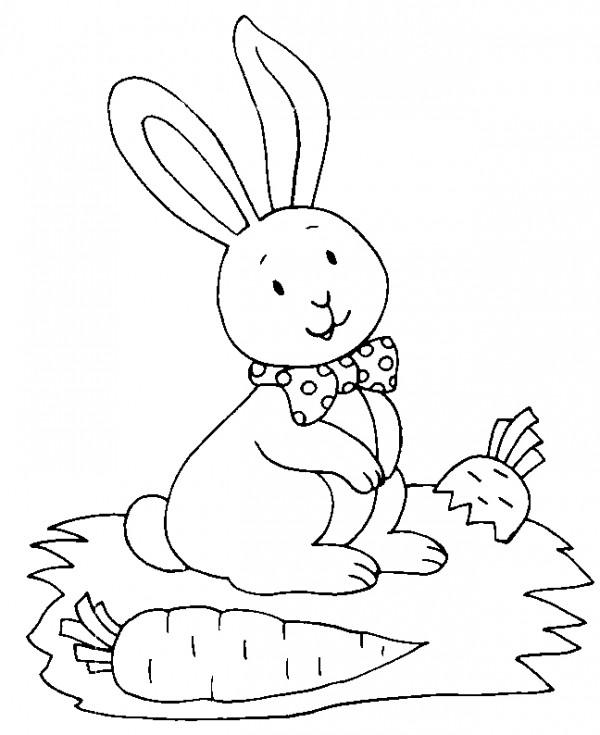 Dibujos de conejitos bebés para colorear | Colorear imágenes