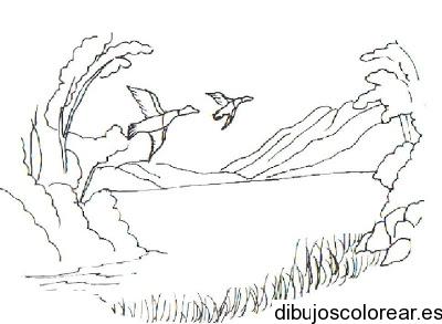 paisajes-para-colorear-para-niños1