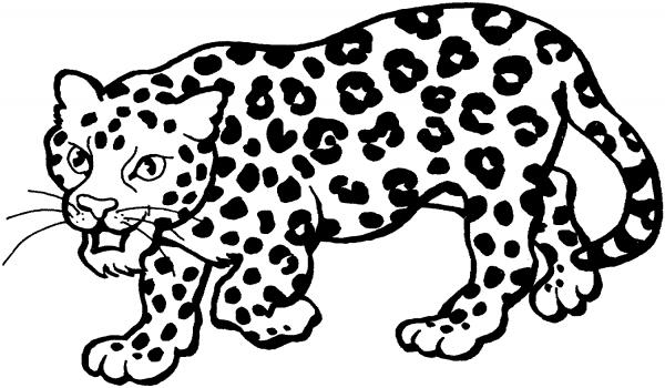 Imágenes para pintar de leopardos | Colorear imágenes