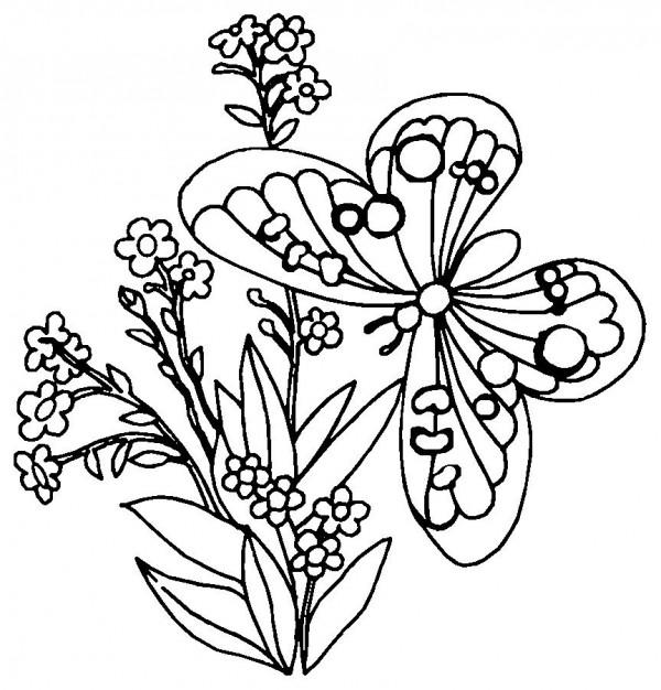 primaveramariposa3
