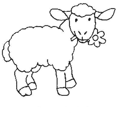 Dibujos de ovejas para colorear  Colorear imágenes