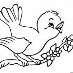 Dibujos de pájaros para imprimir y pintar