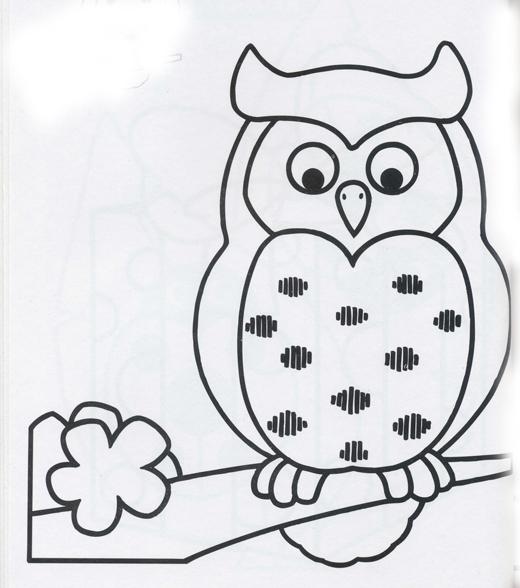 Dibujos de bhos y lechuzas atentas para pintar  Colorear imgenes