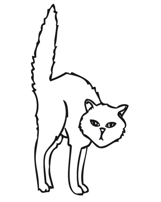 89 Dibujos de gatos para imprimir y colorear  Colorear ...