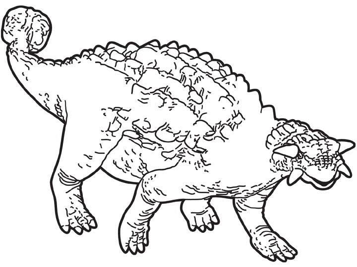 58 dinosaurios para colorear y pintar: Descargar e ...
