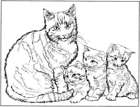 a2f5543c6219df7c83a9c80cbe4f75aa gato ,con,sus,tres,pequenos,gatitos,dibujos,para,