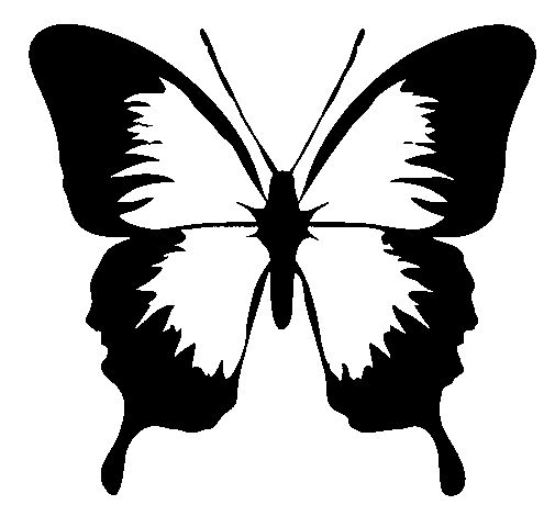 mariposas-volando-para-colorear-frente