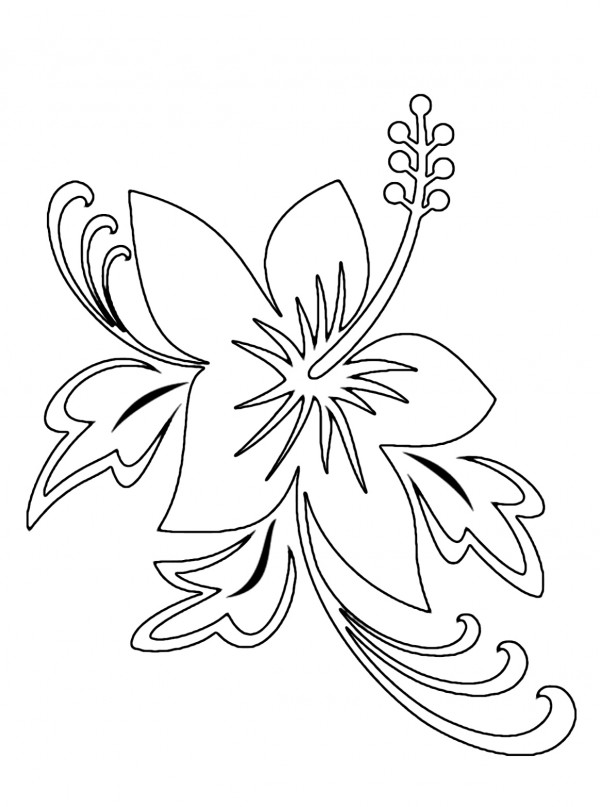 60 Imgenes de flores para Colorear dibujos  Colorear imgenes