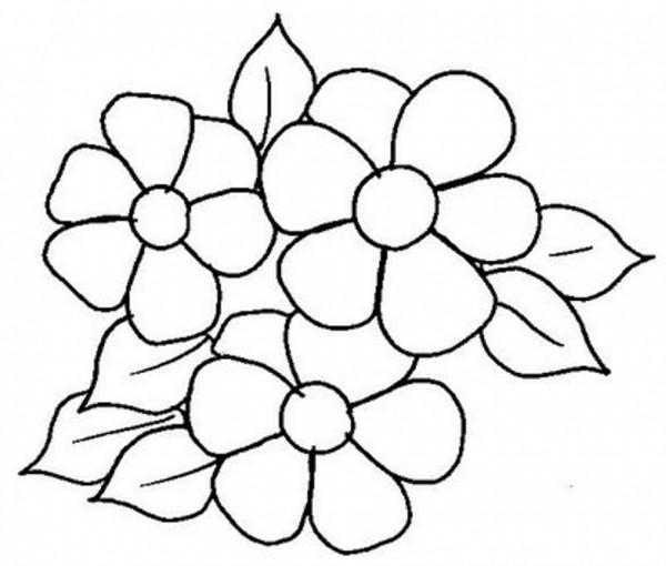 Flores para colorear, fáciles, dificiles y hermosas ...