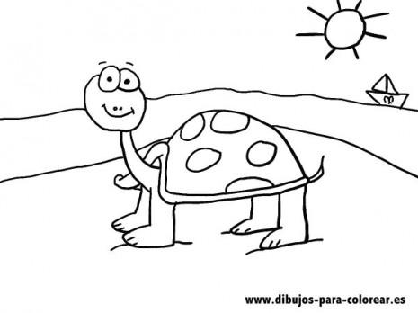 Dibujos-para-colorear-La-tortuga-de-la-playa