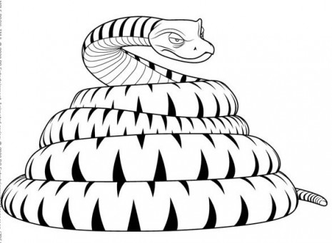 Serpiente (2)