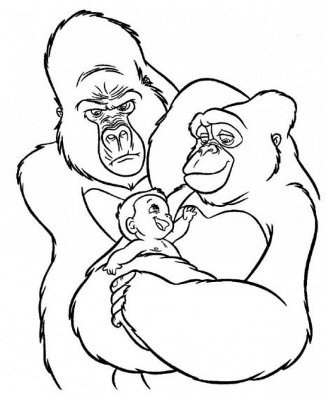 la-familia-de-gorilas-de-tarzan