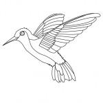 Juguemos pintando las aves