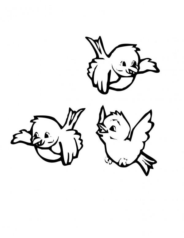 Juguemos pintando las aves | Colorear imágenes