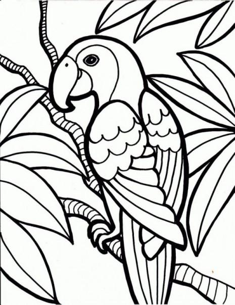 papagayo-para-colorear