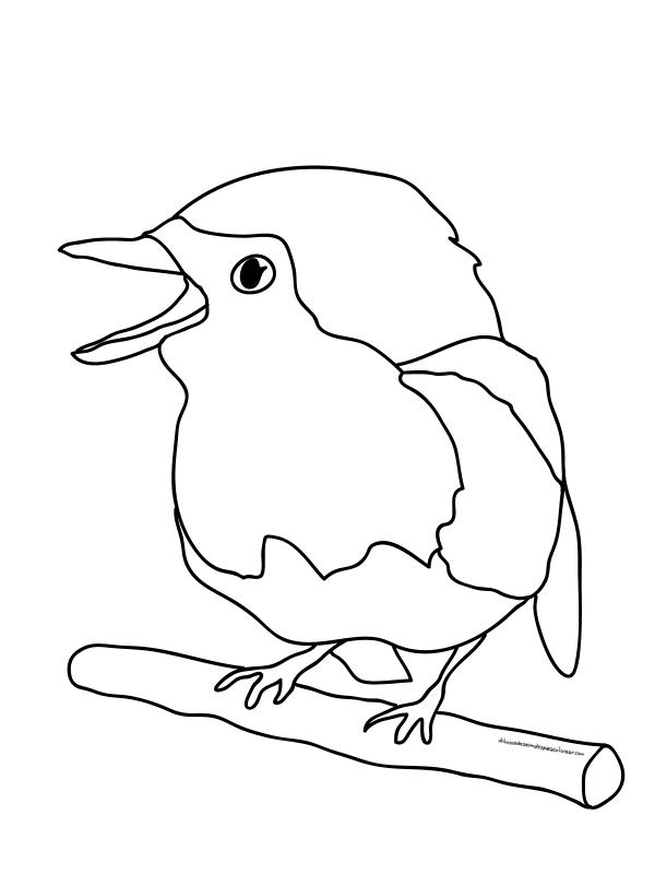 Para divertirse pintando y coloreando aves | Colorear imágenes
