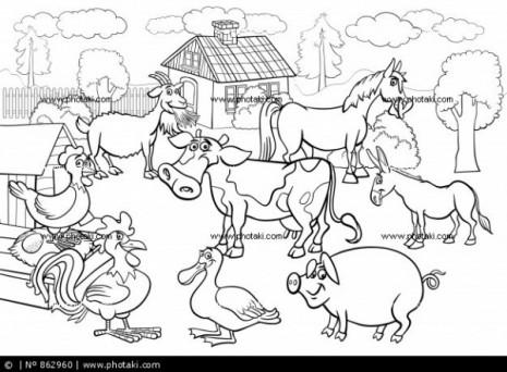 animales-de-granja-historieta-para-libro-para-colorear_862960