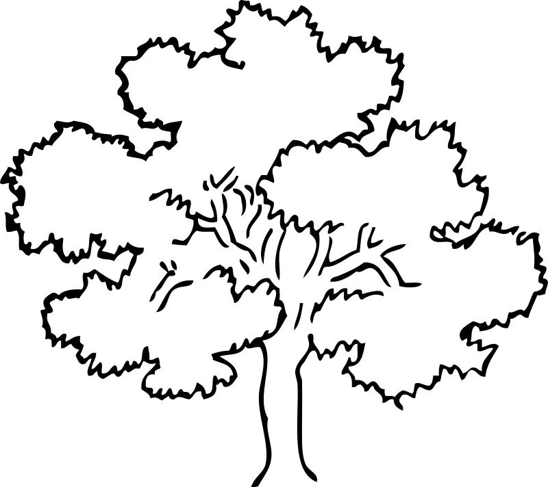 arbol-para-colorear-3