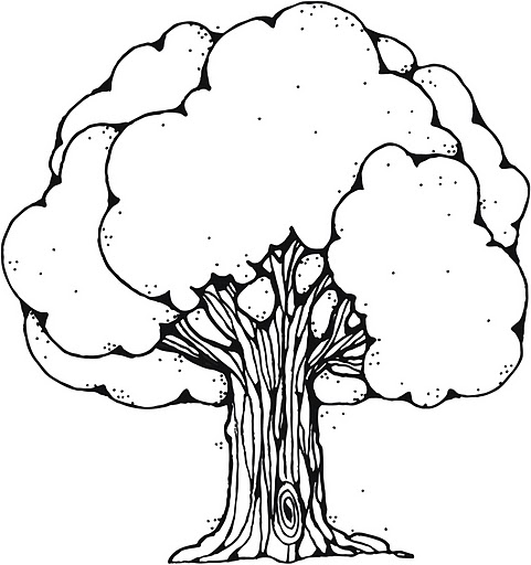 dji_green_tree_b