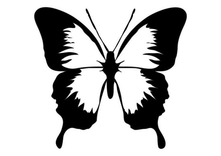 imagenes-de-mariposas-lindas-para-colorear-2