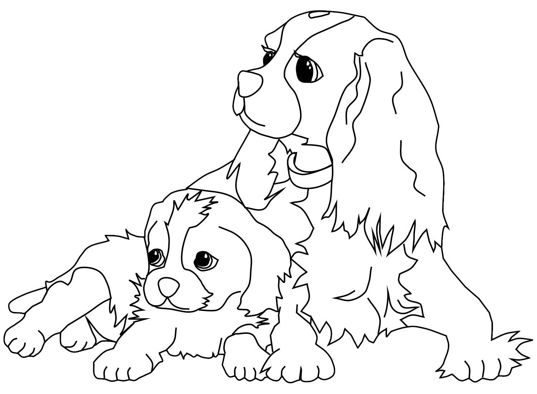 m-dibujos-razas-perros.html-3-2
