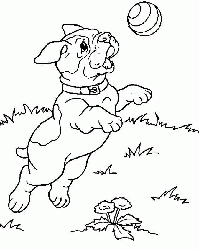 m-dibujos-razas-perros.html-9-9