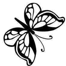 mariposa-n-8-22516