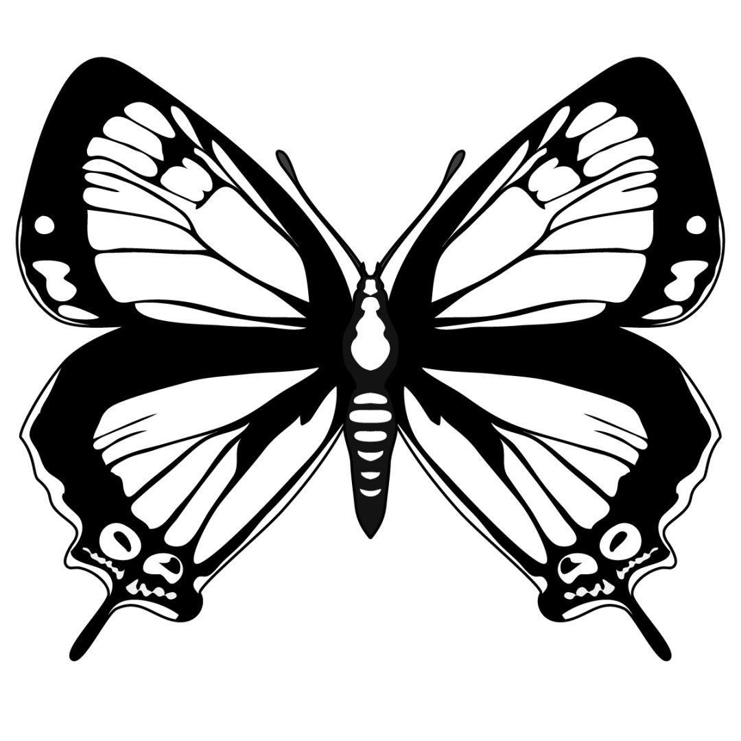 mariposa-oscura-para-pintar