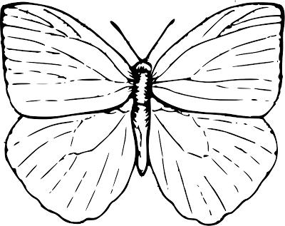 mariposas-para-colorear-3