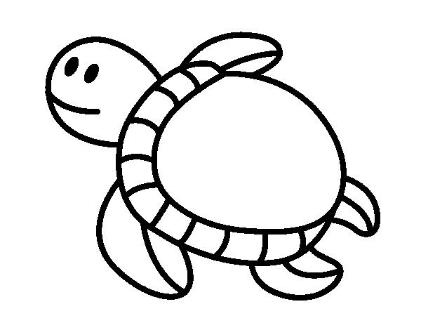 Divirtamonos pintando Tortugas | Colorear imágenes