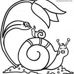 Dibujos de caracoles para imprimir y colorear