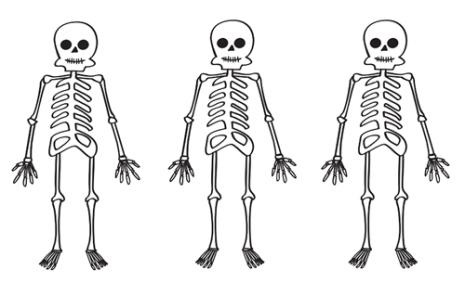 esqueleto.jpg4