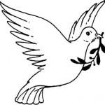 Paloma de la Paz para pintar