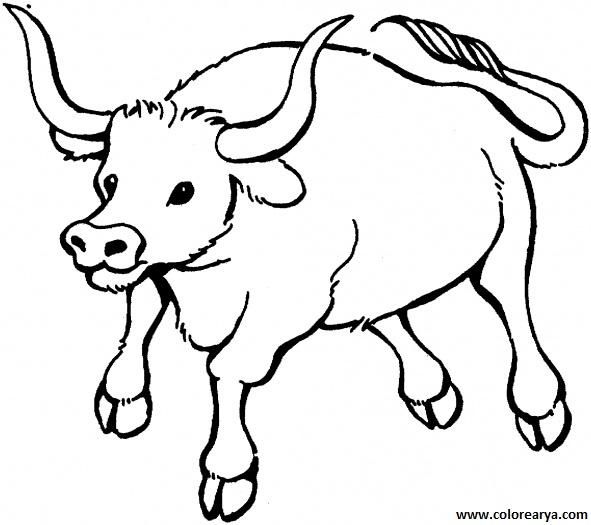 dibujos de toros para pintar