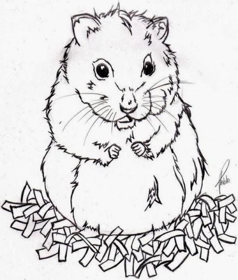 Hamster_by_shugoiwakura